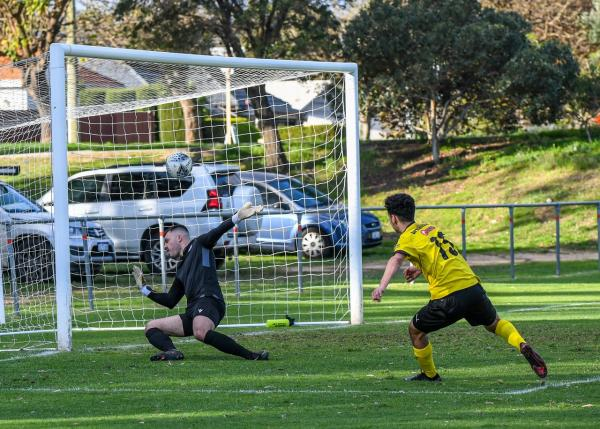 Knights fight back to deny Swan victory